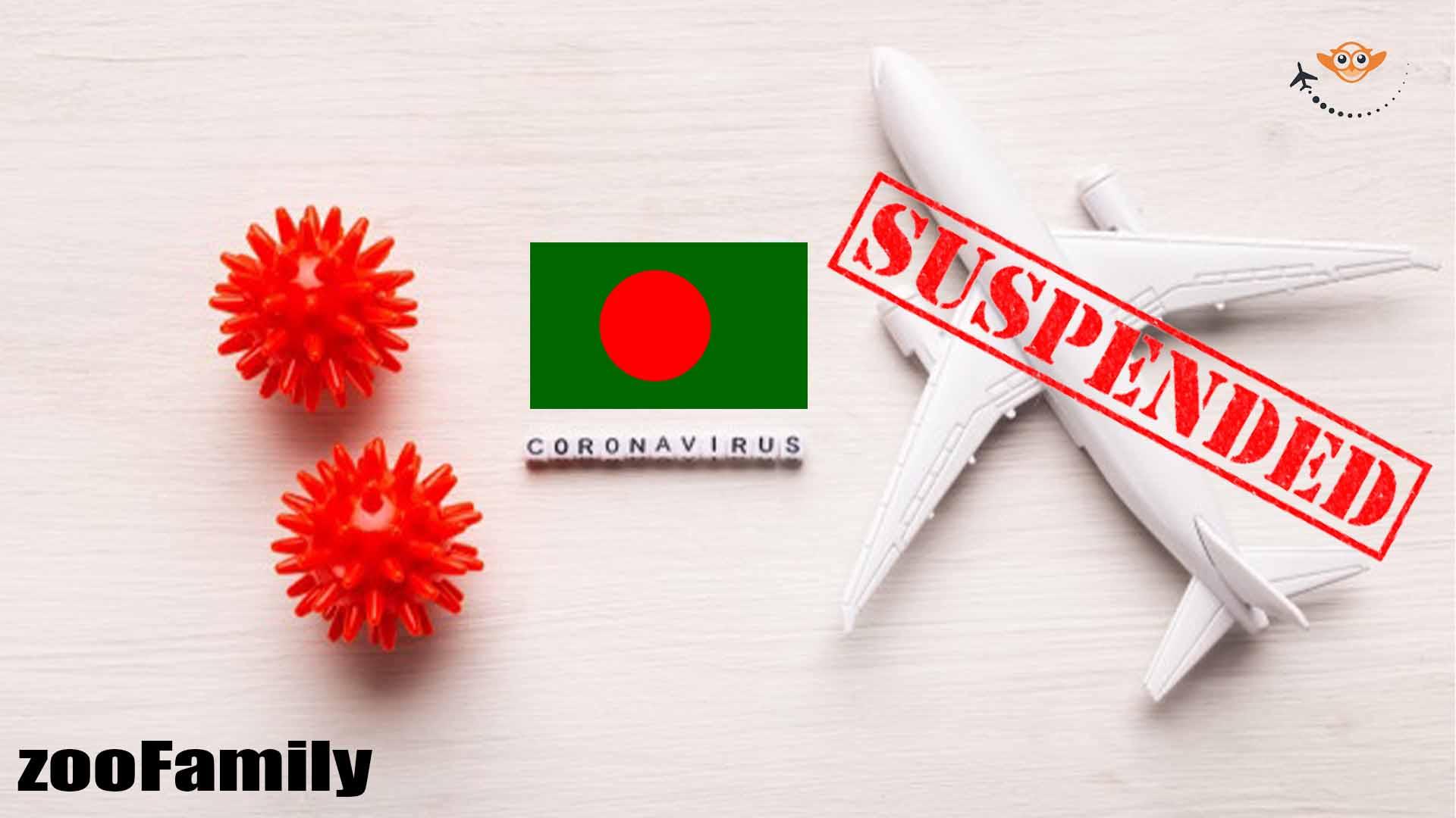 Domestic flights suspended